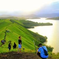 Bukit Teletubbies, Pilihan Wisata Eksotik di Kabupaten Jayapura